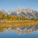 Morning Reflection of the Teton Range by Jeff Goulden