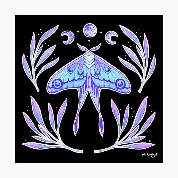 Magical Moth | Nikury Photographic Print