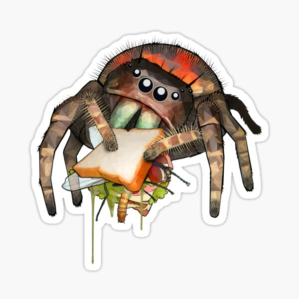 """Lunch on the Fly"" Jumping Spider Sandwich #2 Sticker"