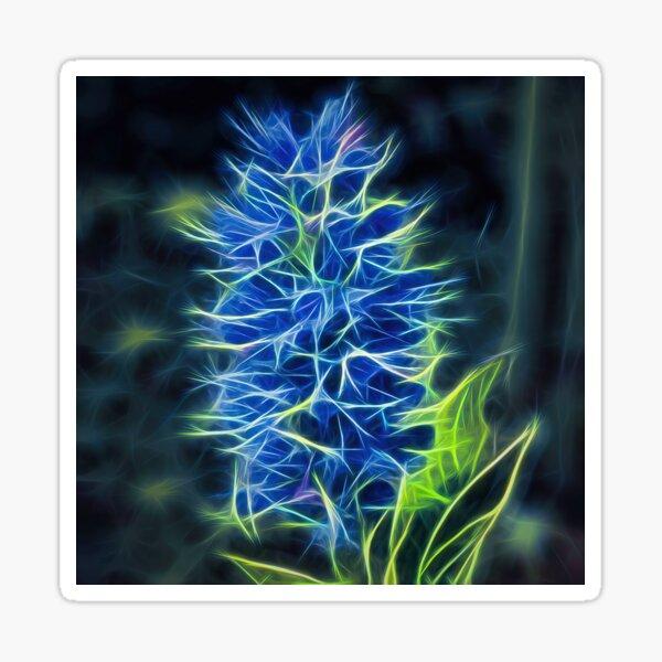 viper's bugloss – blueweed – echium vulgare ¦  Sticker