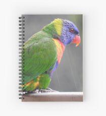Rainbow Lorikeet Spiral Notebook