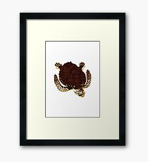 Swimming Turtle Isolated Framed Print