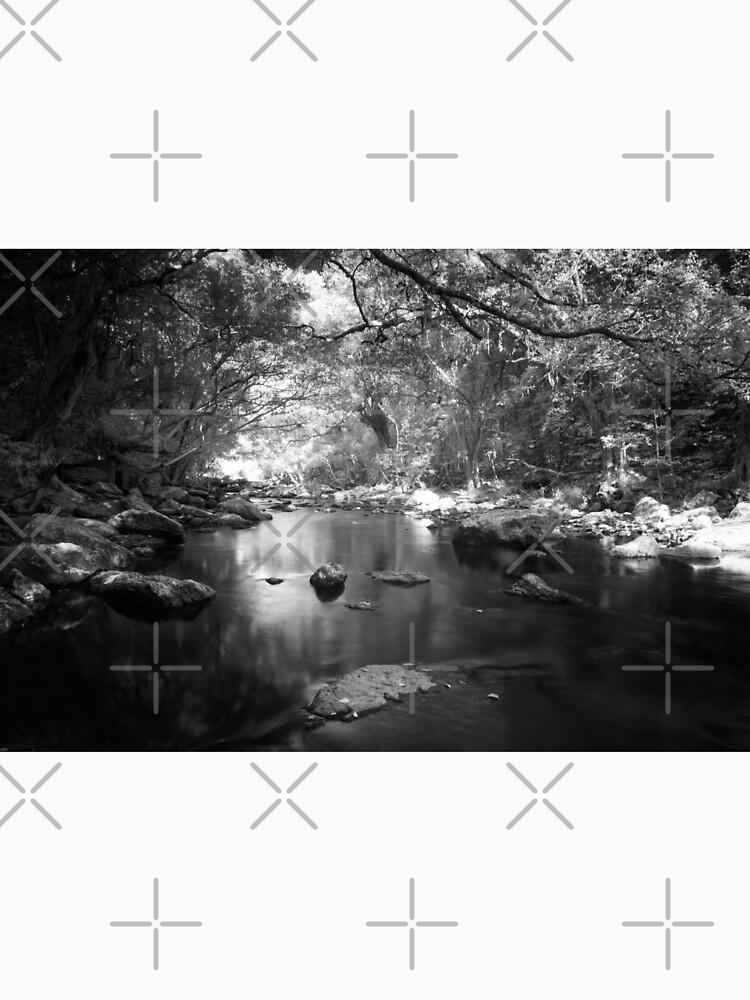 Freshwater Creek by MelBrackstone