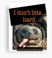 Snapping Turtle - I don't bite hard. Just kidding. I had my fingers crossed. Canvas Print