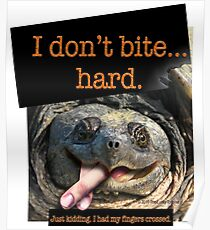Snapping Turtle - I don't bite hard. Just kidding. I had my fingers crossed. Poster