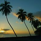 Maui Magic by Marjorie Wallace
