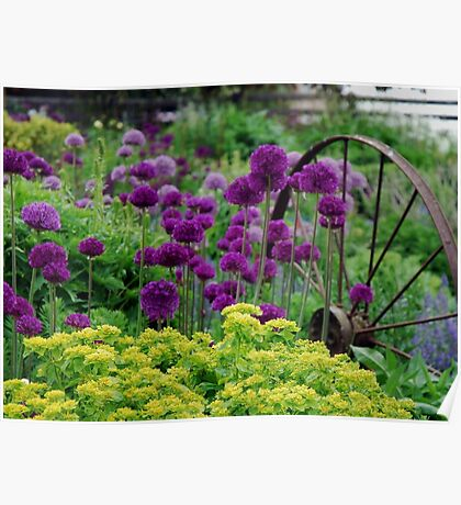 Glorious colours of Spring Poster