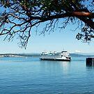 Anacortes ~ San Juan Island Ferry by Marjorie Wallace