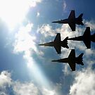 Blue Angels into the Sun by Marjorie Wallace