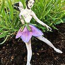 Garden Ballerina  by Sophie Moates