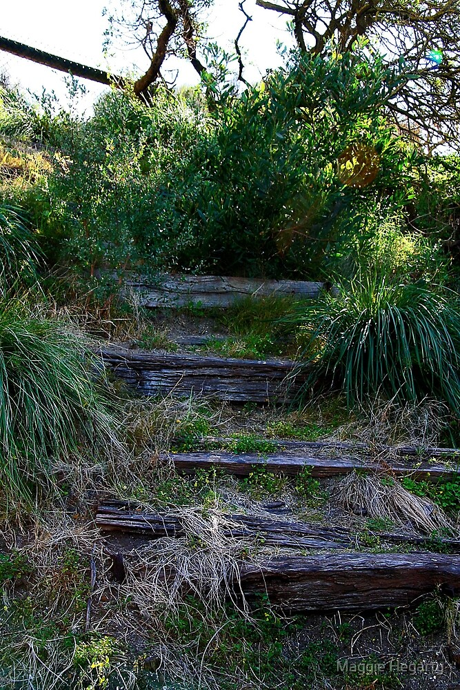 Abandoned stairway by Maggie Hegarty
