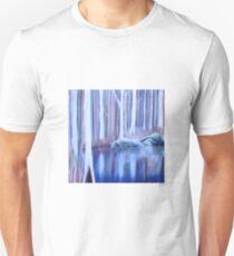The Billabong T-Shirt