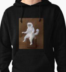 Feline AIDS Awareness Benefit  Air-Guitar Concert Pullover Hoodie