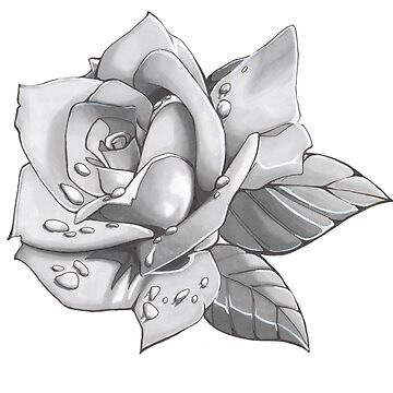Silver Rose de Illustratorz