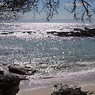 Honeysuckle Point, Beecroft Peninsula, Jervis Bay, NSW by BronReid