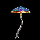 Psychedelic shroom by Randle