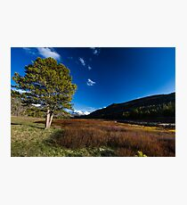 Spring breaks in the Uinta's Photographic Print