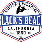 SURFING BLACK'S BEACH SAN DIEGO SURF CALIFORNIA SURFER'S PARADISE BEACH SURFBOARD by MyHandmadeSigns