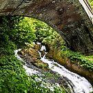 Falls Bridge by martinilogic