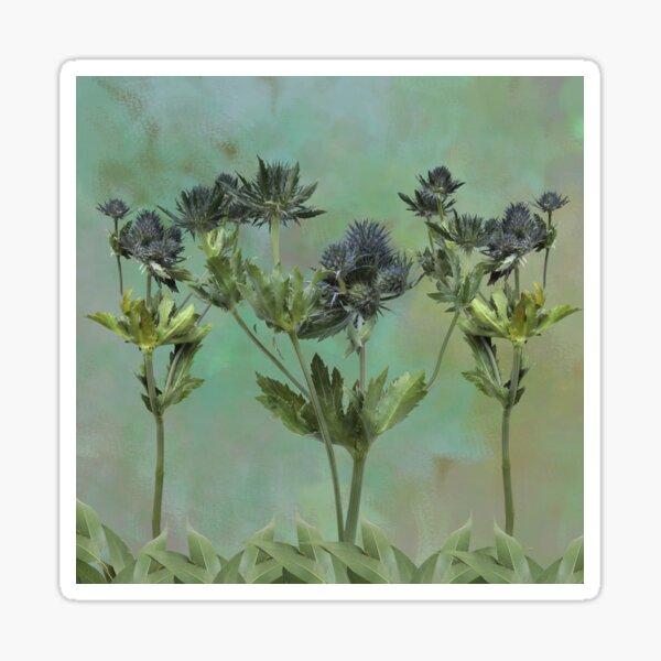 Blue Thistle Flowers Sticker