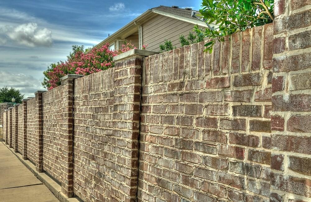 The Brick Wall by John  Kapusta