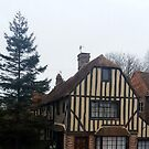 Tudor House by clarebearhh