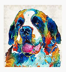 Colorful Saint Bernard Dog by Sharon Cummings Photographic Print