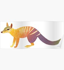 N is for Numbat Poster