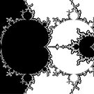 Monochrome Outline Mandelbrot Set by Rupert Russell