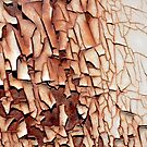 PEELING PAINT SERIES (10 of 12) by Betsy  Seeton