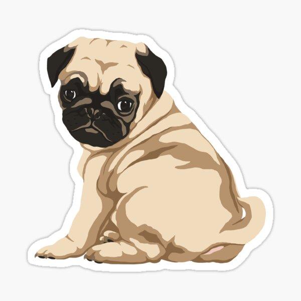 Pug Puppy Pegatina