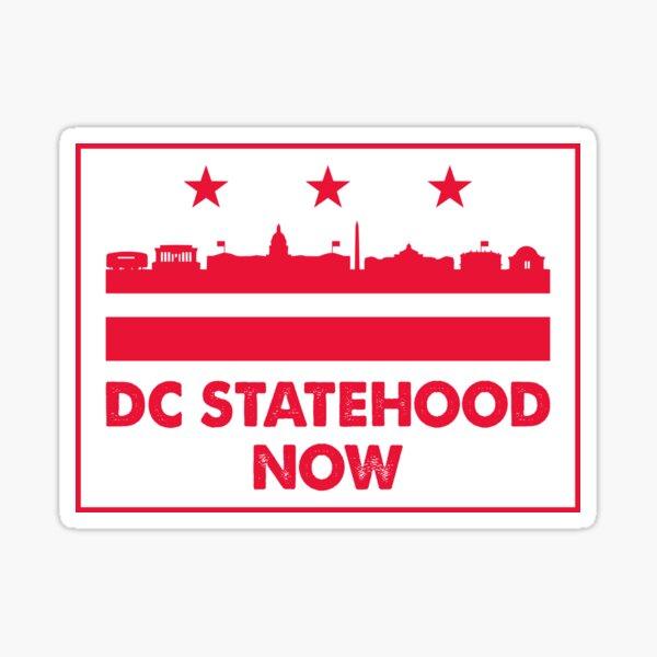 Washington DC statehood now flag landmarks  Sticker