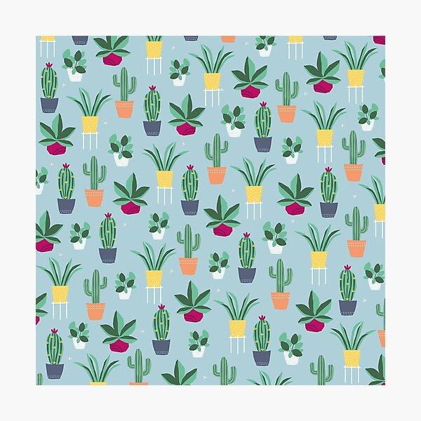 Plant power Photographic Print
