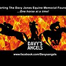Davy's Angels by Suzanne  Gee