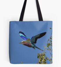 Lilac Breasted Roller in flight, Botswana Tote Bag