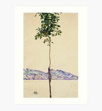 Egon Schiele - Little Tree. Schiele - forest view. Art Print