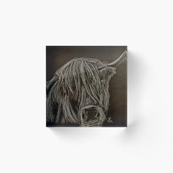 Highland Cow silver metallic pencil drawing on black background Acrylic Block
