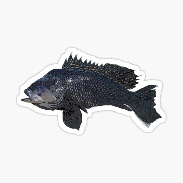 Black Sea Bass Color Design Sticker