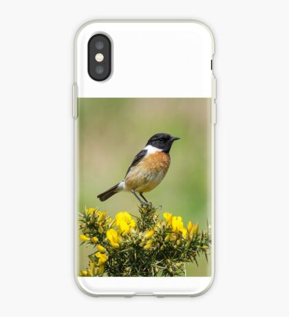 Stonechat on Gorse iPhone Case