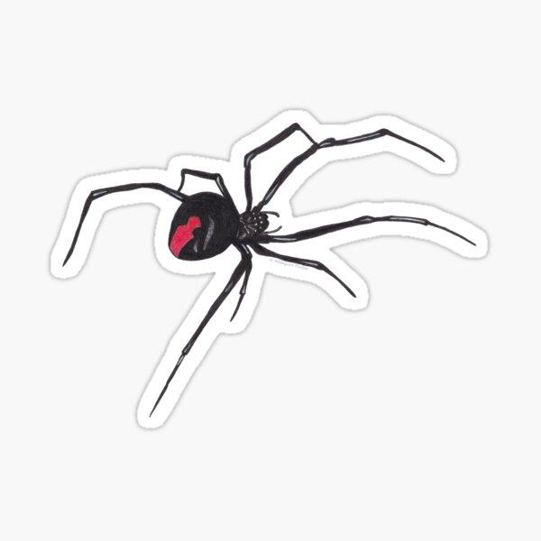 Red-back spider Sticker