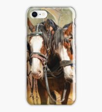 Clydesdale Conversation iPhone Case/Skin