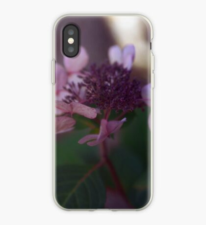 Amethyst and Emerald  iPhone Case