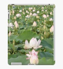 Lotus blossom field Siem Reap iPad Case/Skin