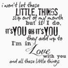 Little Things by echosingerxx