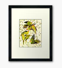 Carolina Parakeet Framed Print