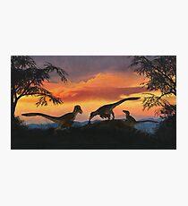 Dakotaraptor Photographic Print