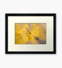 Yellow flower with zoom blur Framed Print