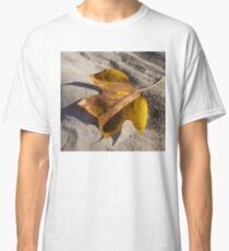 Tulip Tree Leaf - Shadow and Light Classic T-Shirt