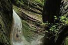 Canyon waterfall by Patrick Morand