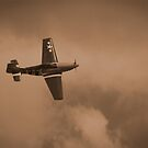 sepia fighter 2 by UncaDeej